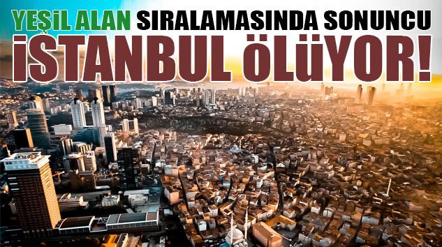 HIZLA BETONLAŞAN İSTANBUL'DA YEŞİL ALANLAR YOK EDİLİYOR..