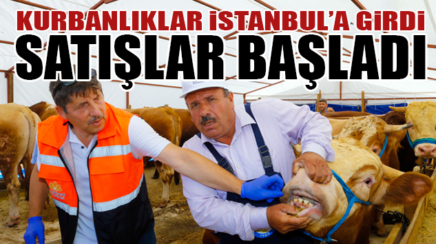 BELEDİYELER KURBAN İŞİNDE HER SENE KENDİNİ GELİŞTİRİYOR..