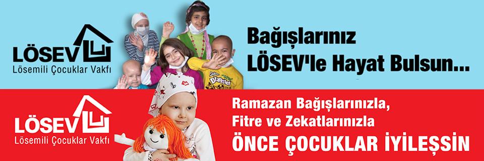 http://www.yerelgazete.com.tr/